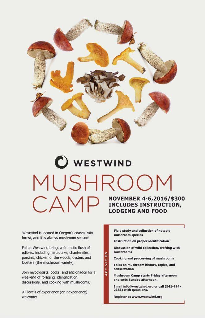 Westwind Mushroom camp poster_2016